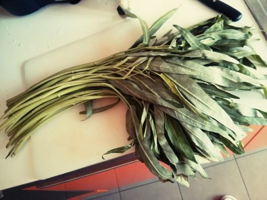 Guardate che meraviglia di verdura sto per cucinare: io ho scelto di strappare le foglie dal gambo e cucinarle separatamente, ma i tempi di cottura sono rapidi.